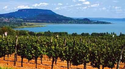 Savaitgalis Budapešte ir Tokaj - vynų kraštas ir karštosios versmės (BUX)