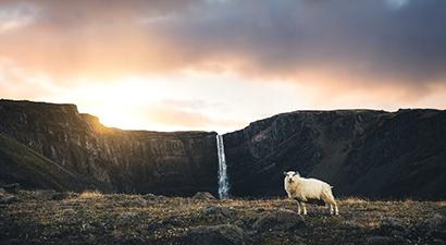 Islandia 2018/2019 z Rainbow. Last Minute, Wczasy i ...